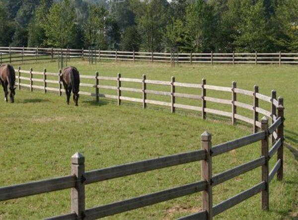 omheining van hardhout mooi vergrijsd met paarden in de wei