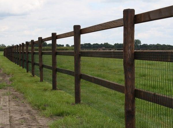 Gaasafrastering voor paardenweide.